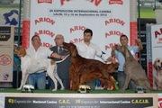 Best group 7 Lalín 2012