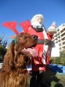 Sasha meeting Santa