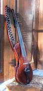 Beestaar Violin