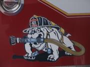Station 43's Bulldog