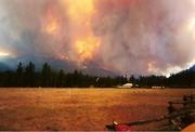 Wildland Fire 2000