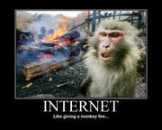 monkey-fire-internet