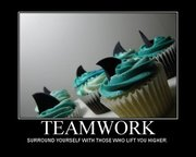 Teamwork Shark