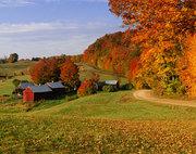 Essence of Vermont