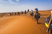Desert-Tours-marrakech