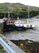 Busy day in Inis Torc Harbour