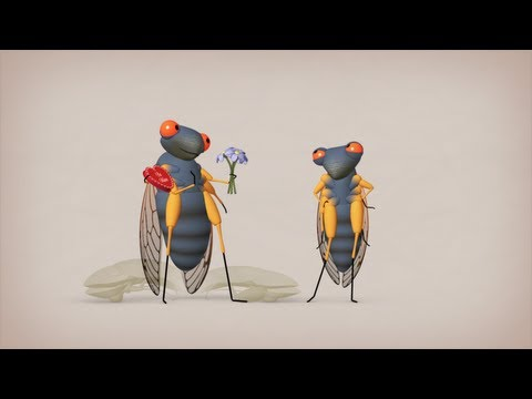 Cicadas: The dormant army beneath your feet - Rose Eveleth