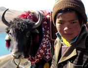3 Tibet