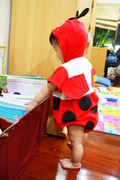 Lady bug loves reading.