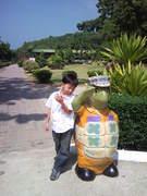 Sea turtle conservation station2.
