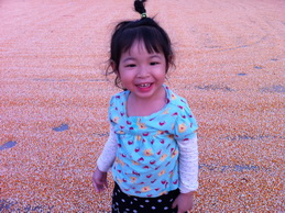 Surrounded by dried corn kernels.