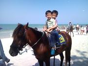 Riding horse at Hua Hin beach.