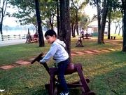 Happy Horse Riding