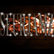 SeurJamz Entertainment
