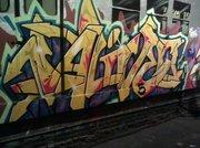 ALIVE5.3