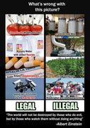 common sense1b