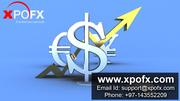 Top 10 Forex Broker in India | Xpox