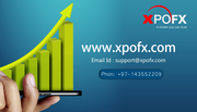 Best Online Forex Trading Platform in Dubai | Xpofx