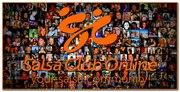 Nieuw logo SalsaClubOnline