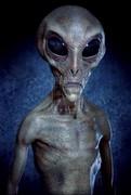 Tall_Grey_Alien1_small
