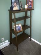 Ladder Bookcase #2 done