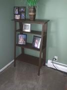 Ladder Bookcase #1 done