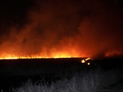 A half mile wide wall of fire
