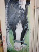 paard nic 0