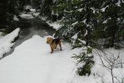 Onverwacht in de sneeuw!