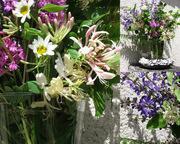 voorjaar Lot et Garonne