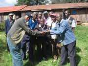 Reformed youth and pastors listening to a radio program on peace-Kenya