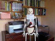 Anselmo en paciente espera