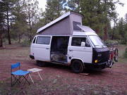 Just my Westy