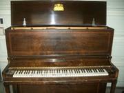 piano 002