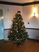 Montrose at Christmas