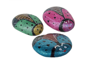 Insects Painted on Rocks