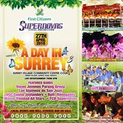 A Day In Surrey 3 - Supernovas Steel Orchestra