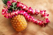 Hawaii Educators