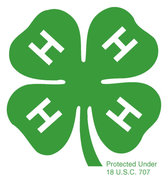 Firefighters in 4-H