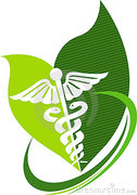 Herbal Medicine.  Applications and effects.