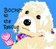 BOCKER TO THE RESCUE