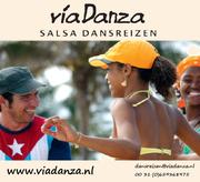 víaDanza Society group