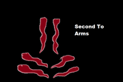 Second To Arms