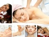 Newly Massage Therapists Questions