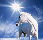 UNICORNS***Star beings***