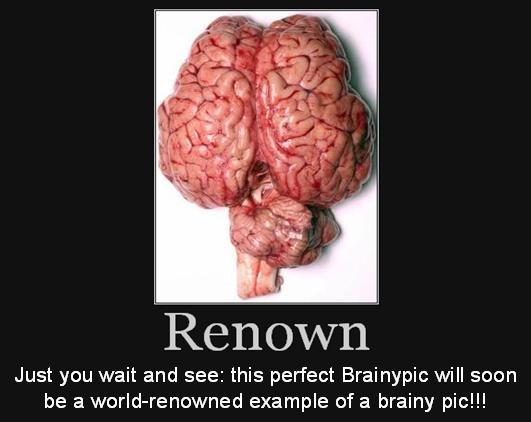 http://www.brainyflix.com/flashcards/show/4672