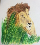 liongrass2s