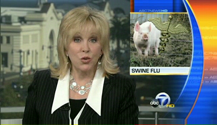 Swine flu deaths spur global epidemic fears  a video from San Francisco