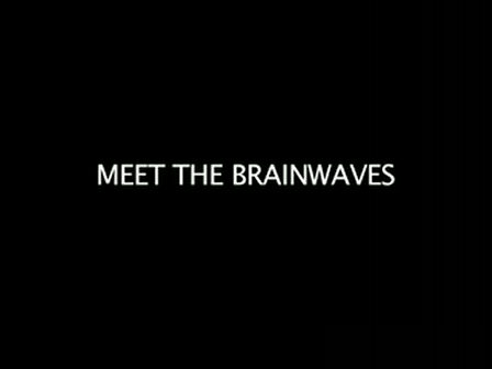 Meet the Brainwaves