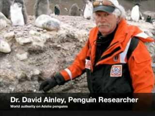 A Conversation With Antarctica